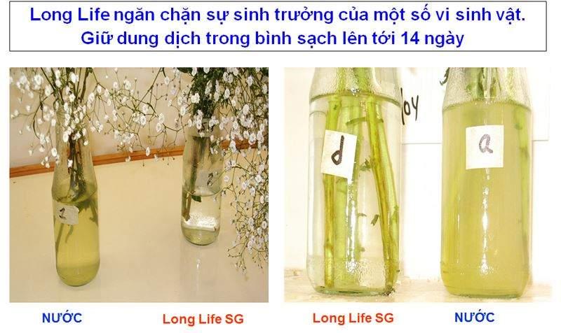 thuoc-duong-hoa-longlife
