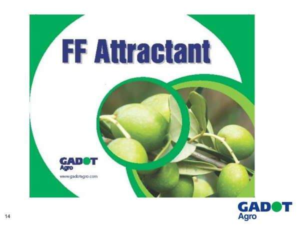 chai-bay-ruoi-cai-FF ATTRACTANT-israel 14