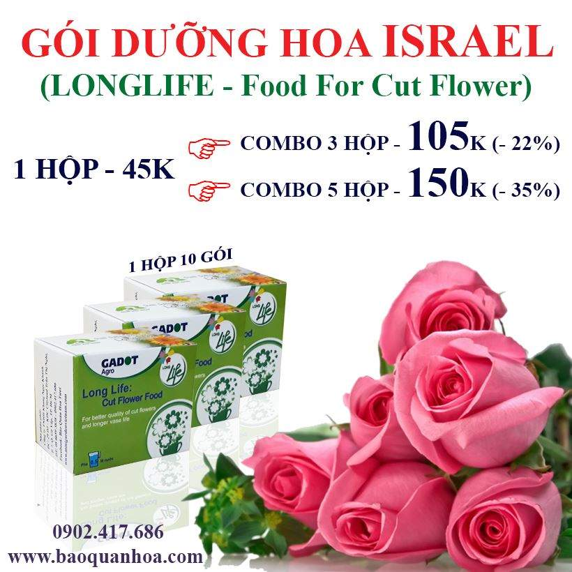 longlife-food-for-cut-flower-2019